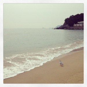 Busan – A City At The Beach