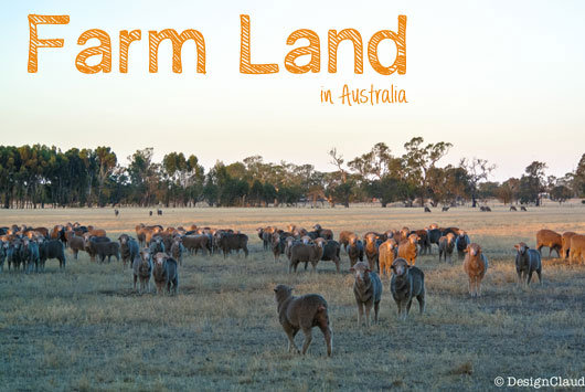 The farmland of Australia