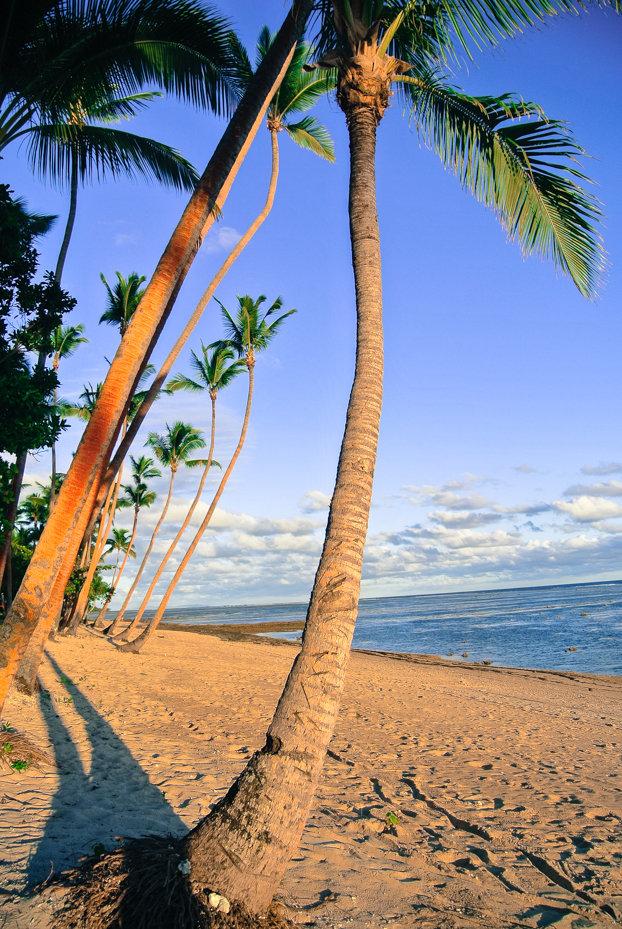 The_Paradise_of_Fiji_05