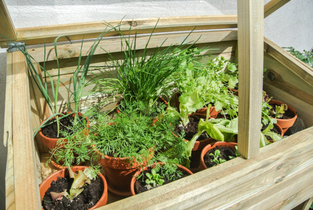 DIY-vegetable-garden
