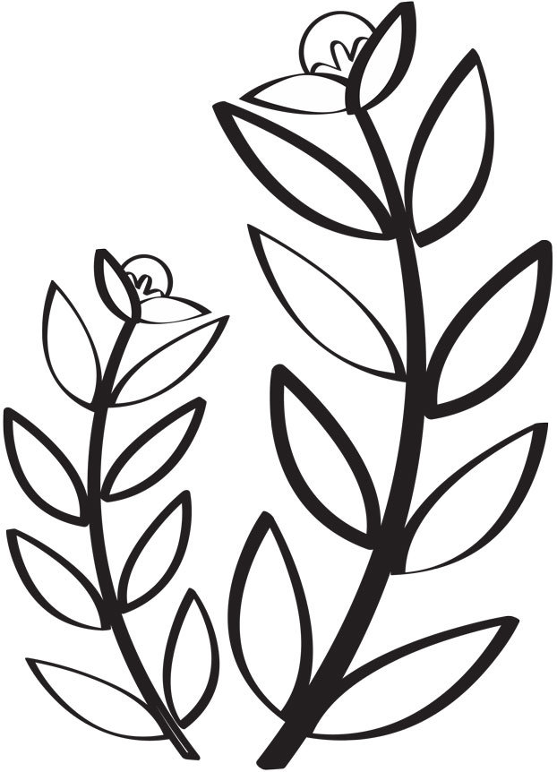 Papiergoed-Zwart-Wit