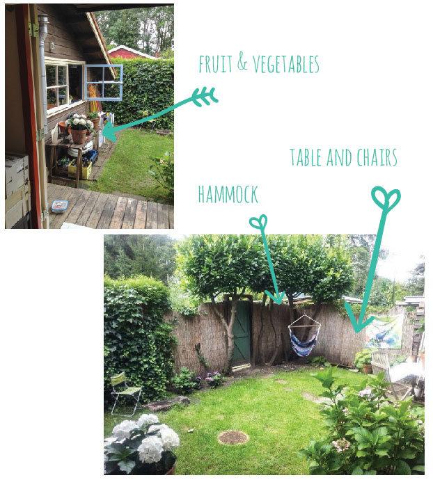 New-house-garden