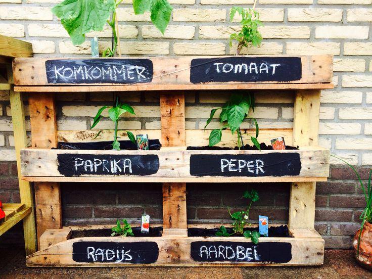 Tuin trends verticaal tuinieren designclaud - Origineel tuin idee ...