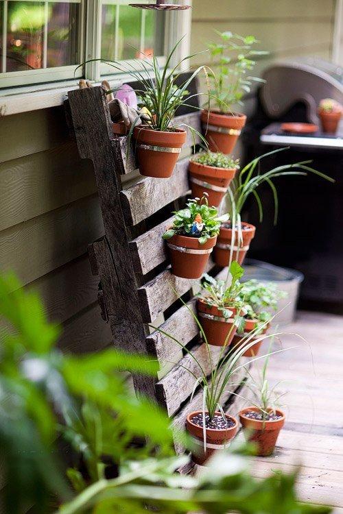 Garden trends: Vertical Gardening